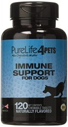 Immune Support Supplement for Dogs – 120 natural chews tablets with Organic Spirulina, Astaxanthin and Coenzyme Q10 – Provides antioxidants – Supports overall ocular health – Made in USA