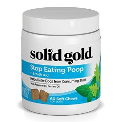 Solid Gold Stop Eating Poop Chews for Dogs with Coprophagia; Natural, Holistic Grain-Free Supplement with Peppermint & Parsley Oil; 60 chews