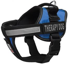 Dogline Vest Harness for Dogs and 2 Removable Therapy Dog Patches, Large/28″ to 38″, Blue