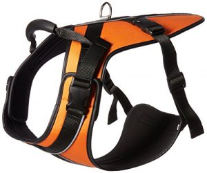 Wacky Paws Pet Sport Travel Harness, X-Large, Orange