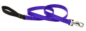 LupinePet Basics 3/4″ Purple 6-foot Padded Handle Leash for Medium and Larger Dogs