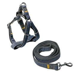 HEAD Tilt Denim Dog Harness & Leash Kit-Medium Pet Leashes