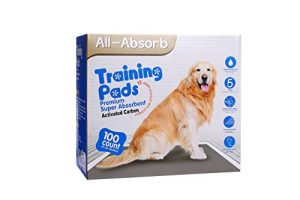 All-Absorb Premium Training Pads, Activated Carbon, 22 by 23-Inch, 100 Count