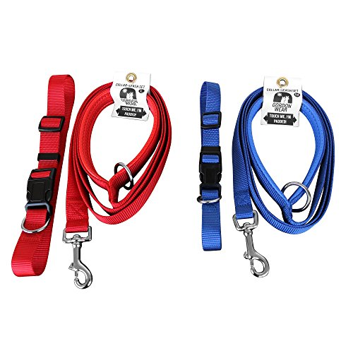Dog Leash with Padded Handle – Sturdy, Safe, and Extra Comfortable – comes with free matching collar 6_feet
