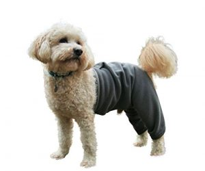 Mozzie Pants SFPTGREY Walking Fleece Dog Pants, Small