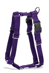 PetSafe Surefit Dog Harness, 3/4″ Medium, Deep Purple