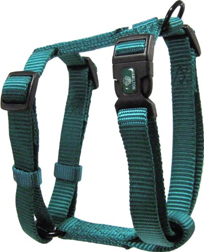 Hamilton Adjustable Comfort Nylon Dog Harness, Teal, 3/4″ x 20-30″