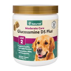 NaturVet Joint Care Supplement For Dogs, Support Joint Health with Glucosamine, MSM and Chondroitin, Tasty Soft Chews, Glucosamine DS Plus Made by