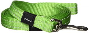 Reflective Dog Leash for Medium Dogs, 5/8″ wide, 6′ long, Green