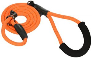 Bow & Arrow Pet Slip Lead Dog Leash, Reflective Nylon Rope Dog Leash for Training, Comfort Grip, 5 Feet, Neon Orange
