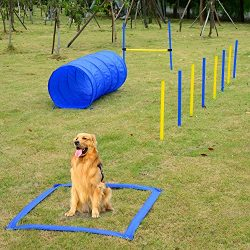 Festnight Outdoor Dog Obstacle Agility Training Exercise Equipment Kit