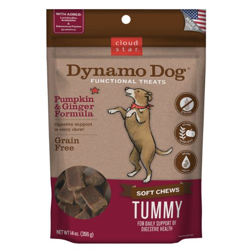 Cloud Star Dynamo Dog Tummy Digestion Support Soft Chew Treats – Pumpkin & Ginger – Grain Free – 14 oz