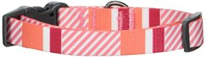 Bow & Arrow Pet Dog Collar, Nautical Stripe Adjustable Dog Collar, Small, 3/4 Inch Wide, 10-14 Inches Long, Coral Pink