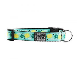 RC Pet Products 1″ Adjustable Dog Clip Collar, Medium, Pineapple Parade