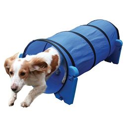 Agility Tunnel – Dog play & exercise toy