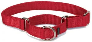 PetSafe Martingale Collar 1″ Medium, Red