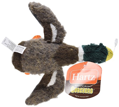 HARTZ Nature's Collection Quackers Plush Bird Dog Toy – Small (Colors/Styles Vary)