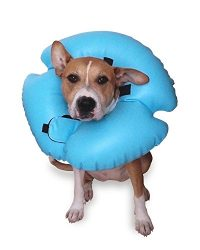 Remedy + Recovery Stay Rite Xtra Strong Inflatable Recovery Dog Collar, Medium, Blue