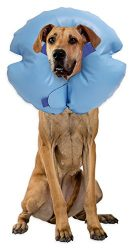 Remedy + Recovery Stay Rite Xtra Strong Inflatable Recovery Dog Collar, X-Large, Blue