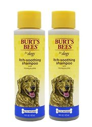 Burt's Bees for Dogs All-Natural Itch Soothing Shampoo with Honeysuckle, Pack of 2 | Best Anti-Itch Shampoo For All Dogs And Puppies With Itchy Skin