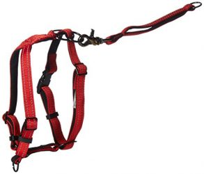 Sporn Dog Harness, Medium, Red