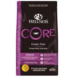 Wellness CORE Natural Grain Free Dry Dog Food, Senior, 4-Pound Bag