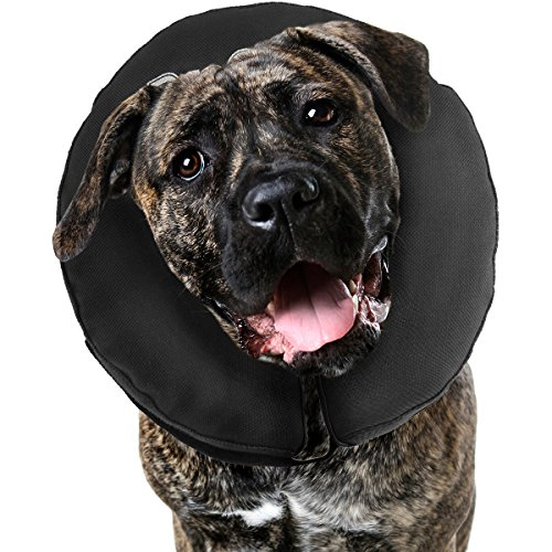 ZenPet Pro Collar Comfy Pet E-Collar For Dogs XX-Large