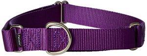 PetSafe Martingale Collar, 1″ Large, Deep Purple