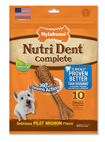 Nylabone Nutri Dent Adult Filet Mignon 10 ct Small