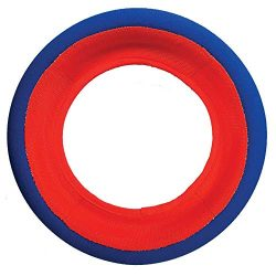 Petmate Chuckit Fetch Wheel Toy for Dogs, Large