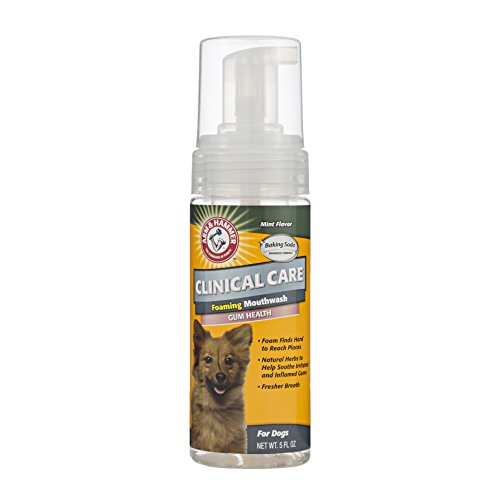 Arm & Hammer Clinical Pet Care Dental Foaming Mouthwash for Dogs | Soothes Inflamed Gums, 5 ounces, Mint Flavor