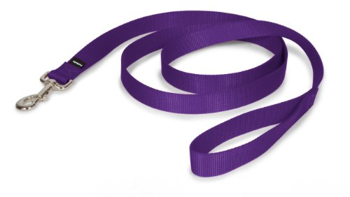 PetSafe Nylon Leash, 1″ x 6′, Deep Purple