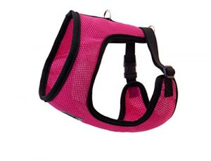 RC Pet Products Cirque Soft Walking Dog Harness, X-Small, Raspberry