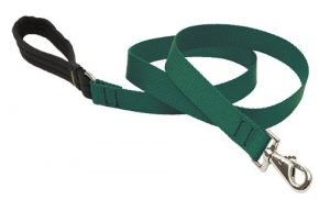 LupinePet Basics 1″ Green 6-foot Padded Handle Leash for Medium and Larger Dogs