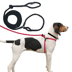 Harness Lead Escape Resistant, Reduces Pull Dog Harness, Small/Medium, Black