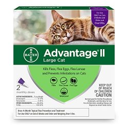 Bayer Advantage II Flea Prevention Large Cats, over 9 lbs, 2 doses