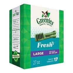 Greenies Fresh Large Dental Dog Treats, 27 oz. Pack (17 Treats)