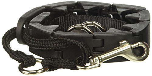 Star Mark Pro-Training Dog Collar, Large – 21″