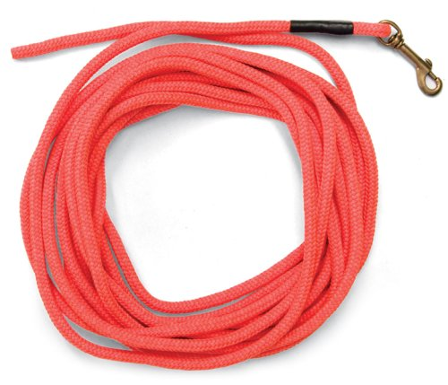 SportDOG Brand Orange Check Cord – 30 Feet Long – Strong but Lightweight Training Tool – Highly Visible and Floats
