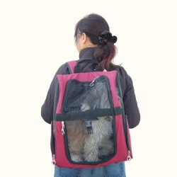 Backpack Pet Carrier – Burgundy