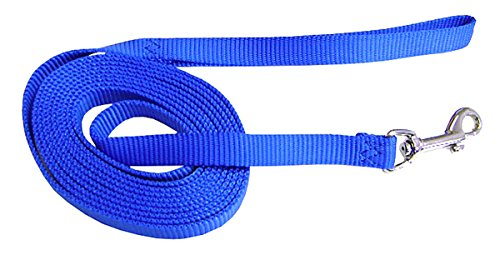 Hamilton Nylon Dog Training Lead, 5/8-Inch by 10-Foot, Blue