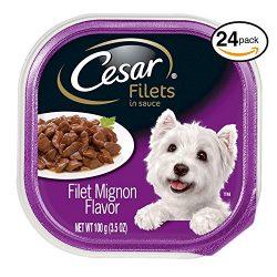 Cesar CANINE CUISINE Wet Dog Food Filet Mignon Flavor, (Pack of 24) 3.5 oz. Trays