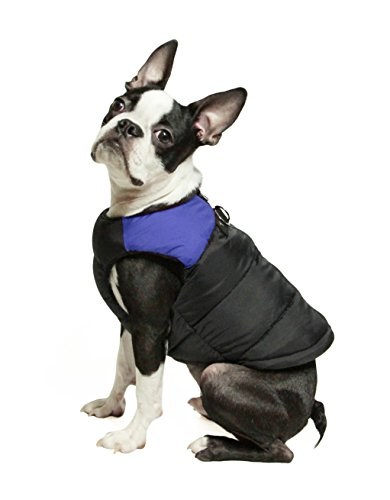 Gooby Padded Cold Weather Vest for Small Dogs with Safe Fur Guard Zipper Closure, Blue, Small