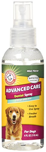 Arm & Hammer Dog Dental Care Fresh Breath Dental Spray for Dogs | Reduces Plaque & Tartar Buildup Without Brushing, 4 ounces, Mint Flavor