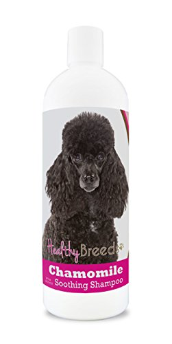 Healthy Breeds Chamomile Dog Shampoo & Conditioner with Oatmeal & Aloe for Poodle, Black – Over 200 Breeds – 8 oz – Gentle for Dry Itchy Skin – Safe with Flea and Tick Topicals