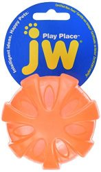 JW Playplace Squeaky Ball, Medium, Multicolor