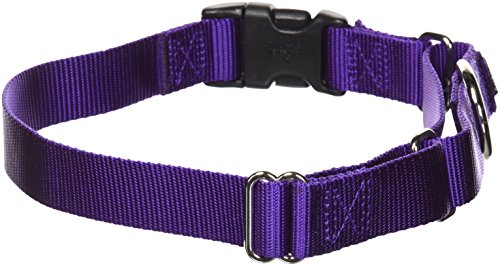 PetSafe Martingale Collar with Quick Snap Buckle, 1″ Large, Deep Purple