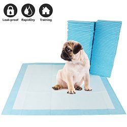 BV 100 Piece Pet Training Pads for Dog and Puppy, Rapid-Dry Technology