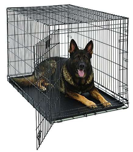 XL Dog Crate | MidWest Life Stages Folding Metal Dog Crate | Divider Panel, Floor Protecting Feet, Leak-Proof Dog Tray | 48L x 30W x 33H Inches, XL Dog Breed