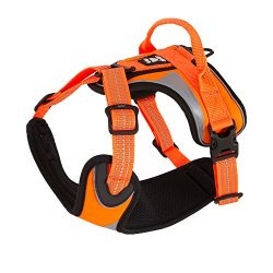 Hurtta Active Dazzle Dog Harness, Hi-Viz Orange, 32-39 in
